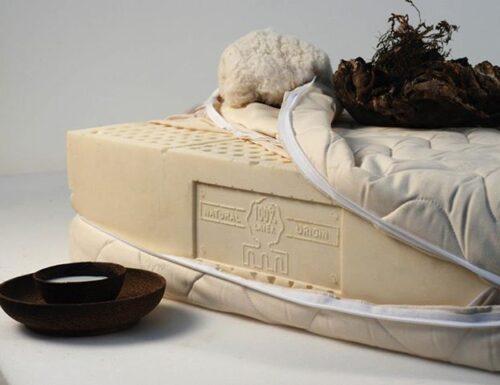 I materassi naturali e il processo di cardatura: dall'ecosostenibilità, al riposo perfetto